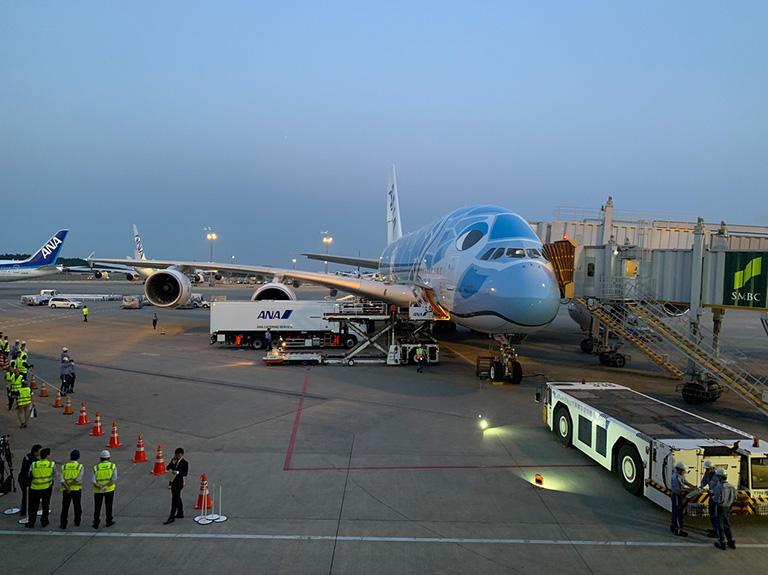 ボーイング製のB747ジャンボジェットが、世界の空から次々と姿を消していく中、「フライングホヌ」と名付けられた空飛ぶ巨大海亀の塗装といい、綾瀬はるかさんのCMといい、注目度満点の華々しいデビューを飾ったANAのA380初便就航直前 (成田空港)