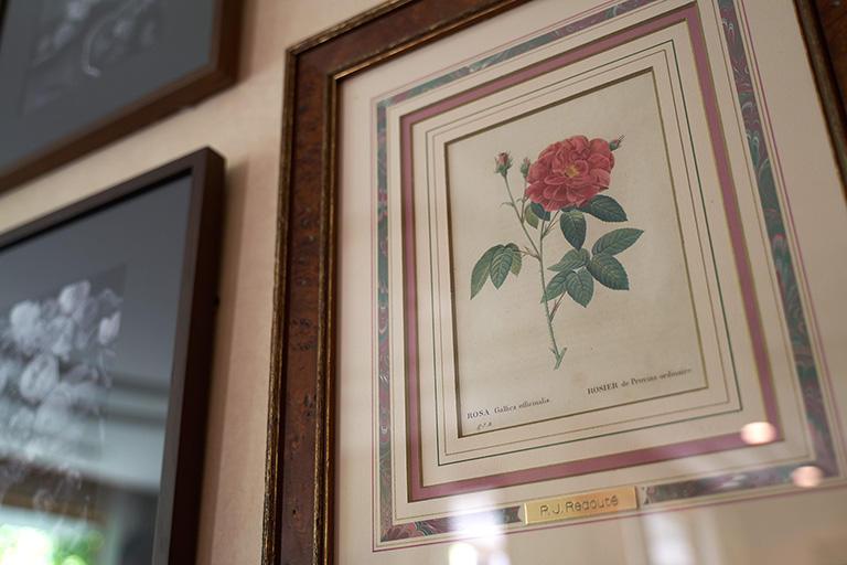 ここに架けてある絵はその時代、200年前に描かれたオリジナルのものなんです