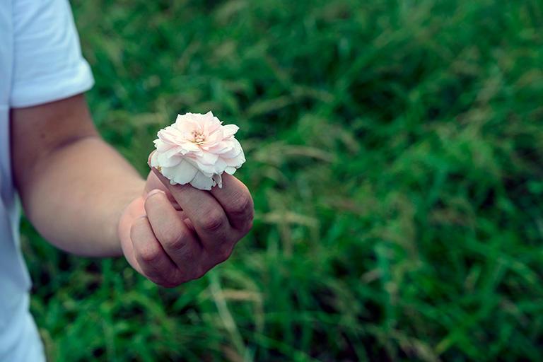 ハウスの外の野に咲いている「和ばら」。そのまま生で食べられる。