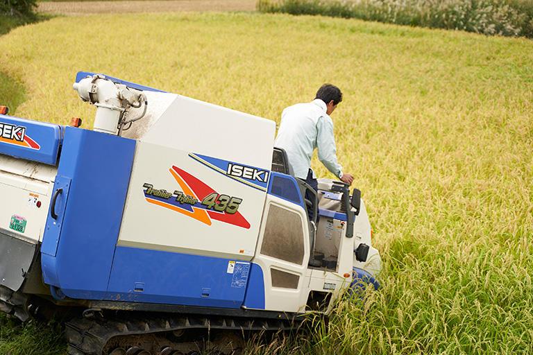 棚田ではコンバインの運転も熟練が必要。平野部の広い田のように「一筆書き」で刈り進むことは難しく、前進と後退を繰り返して丁寧に稲を刈る。大型のコンバインが使えないこともあり、作業時間は長くなる。