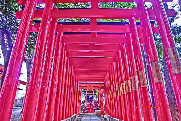 神社の鳥居は人信仰を結集した神聖な場所です。 (撮影:筆者)