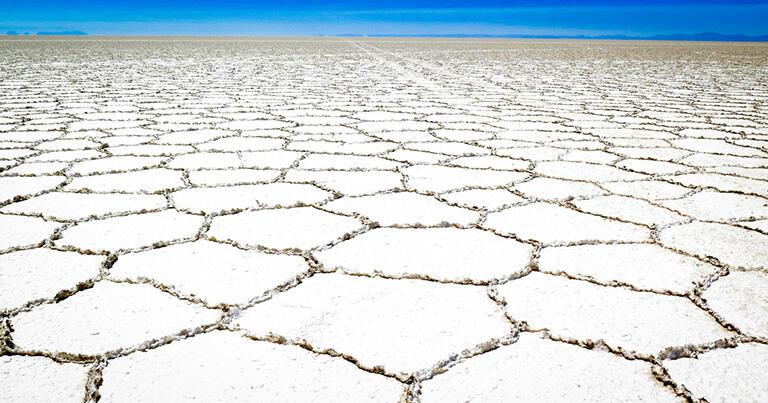 近くで見ると塩湖の表面は亀の甲羅のようにひび割れていた
