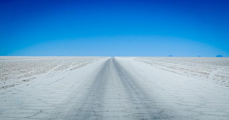 車が頻繁に走るところには跡がつき、道ができる