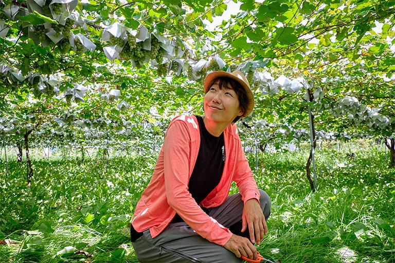 キスヴィンの名前の由来は「ブドウ畑にキスしたくなるほどのブドウ好きの集まり」