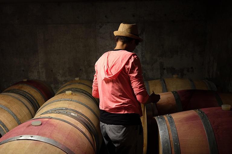 ワインを作りたい人たちをどう育て、自らの仕事をどう譲るかを考えながら仕事をしている
