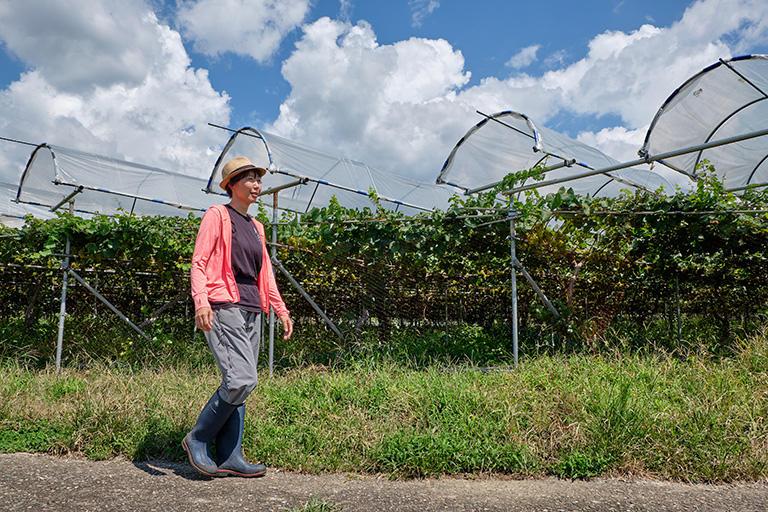 ワイナリー経営の視点での教育、ブドウ栽培に関する研究を強くしないと日本のワインに未来はないと思う