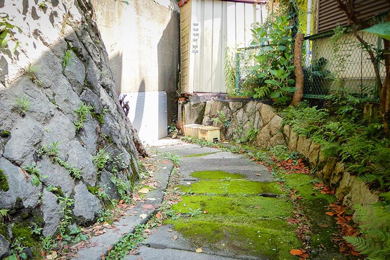 横須賀線の土手に沿って蓋暗渠が続き、土手を貫通している