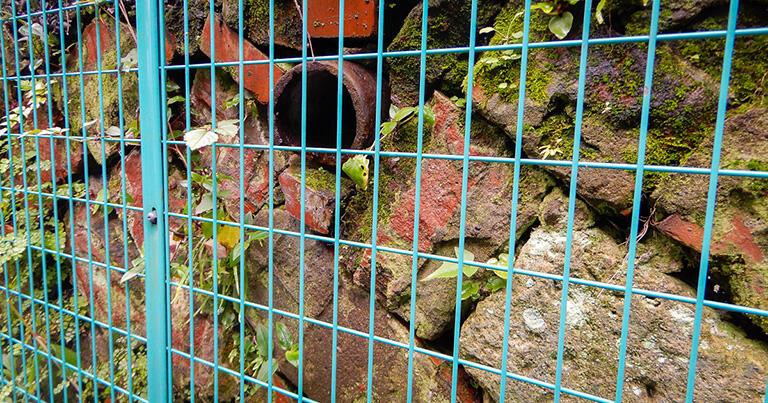石やレンガを積んだ古い護岸から、暗渠道に向けて土管が顔をのぞかせていた。以前は空川へ排水していたらしい