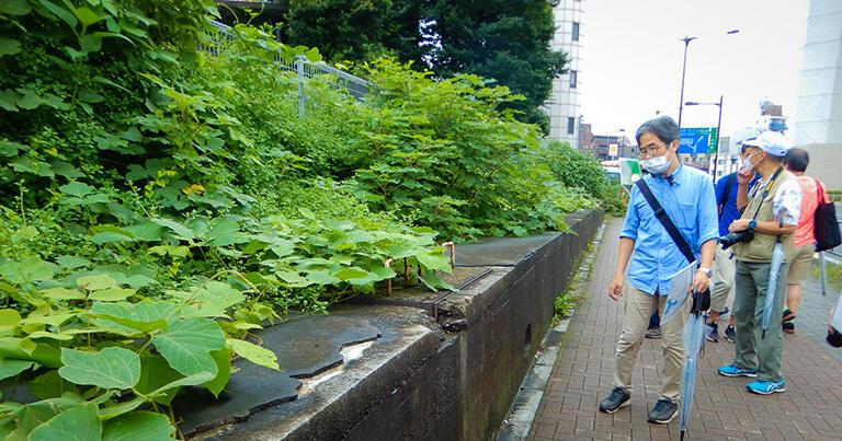 本田さん(手前)が見ている取っ手付きの蓋の下に堰があり、神山口分水を取水していた