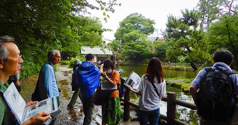 鍋島松濤公園の池。現在でも1時間に1000リットル程度の湧水がある