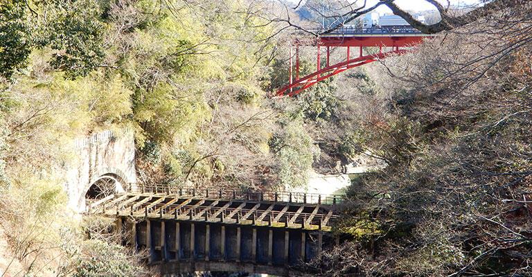 山王宮のあたりから見下ろしたところ。画面奥の赤いアーチ橋は国道20号の新猿橋。水路橋は道路よりかなり低いところを通っているのが分かる