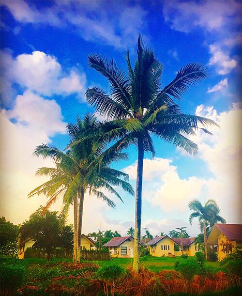 絵本みたいな景色が印象的でした。フィリピンのBicol(ビコール)へ行ったときの写真です